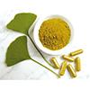 icon phyto medicine