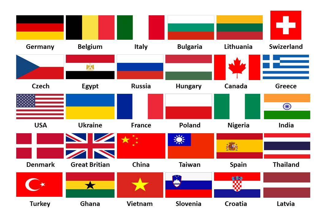 visitor flag